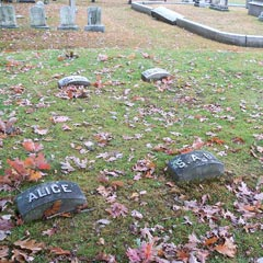 Borden family headstones. Front row, left to right are Alice (Lizzie's infant sister); Lizzie's mother, Sarah; Andrew Borden; Abby Borden. Behind them are Lizzie's sister Emma, and Lizzie herself. (She was buried at her father's feet, at her own request.)