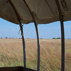 Wagon view of the Ingalls homestead, De Smet, South Dakota.